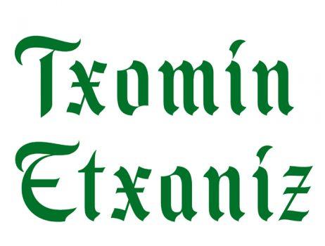 Bodega Txomin Etxaniz